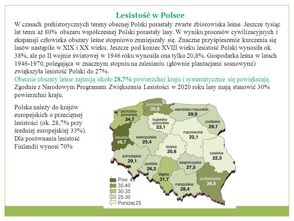 Lesistość w Polsce