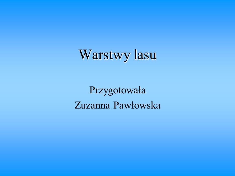 Przygotowała Zuzanna Pawłowska