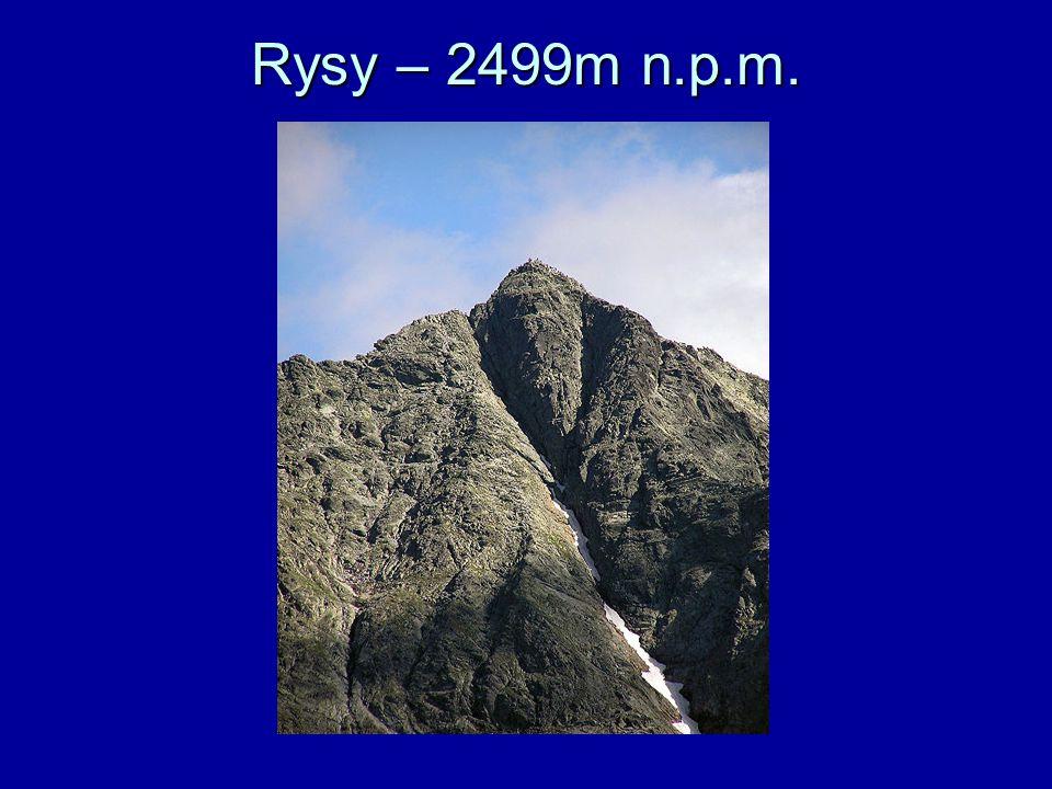 Rysy – 2499m n.p.m.