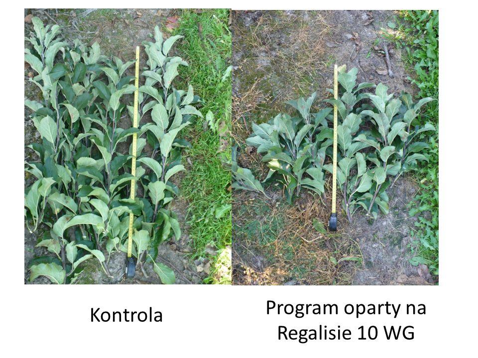 Program oparty na Regalisie 10 WG