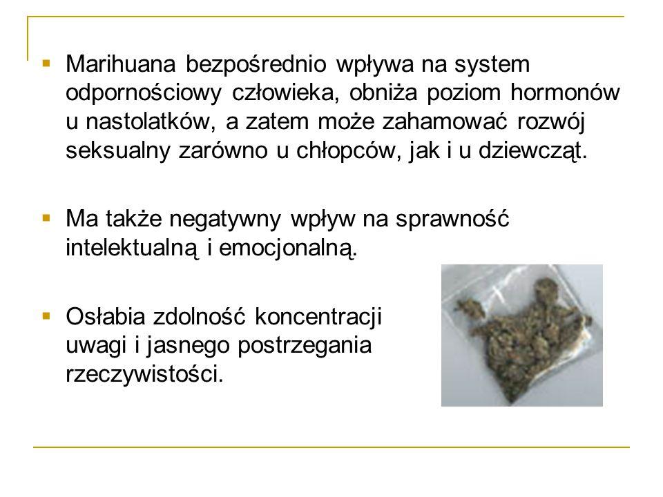 Marihuana bezpośrednio wpływa na system odpornościowy człowieka, obniża poziom hormonów u nastolatków, a zatem może zahamować rozwój seksualny zarówno u chłopców, jak i u dziewcząt.