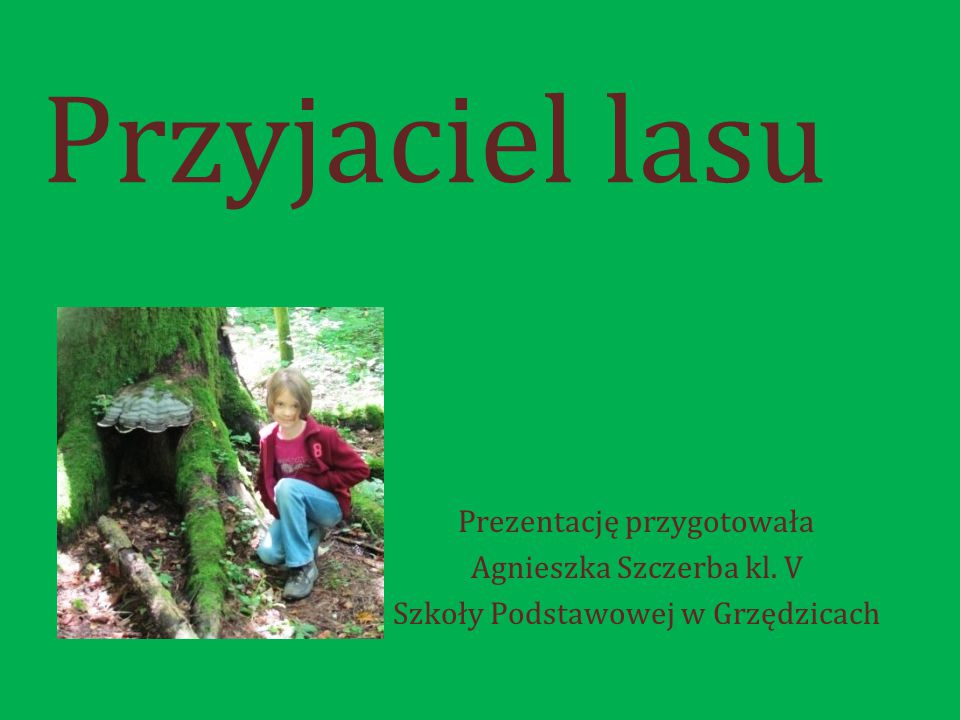 Przyjaciel lasu Prezentację przygotowała Agnieszka Szczerba kl. V