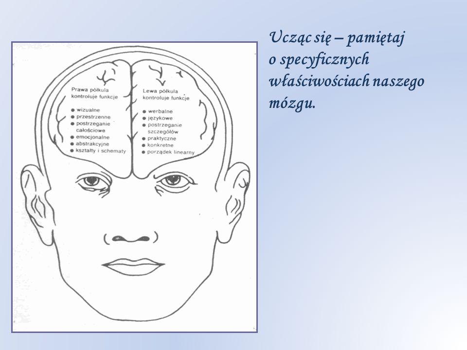 Ucząc się – pamiętaj o specyficznych właściwościach naszego mózgu.