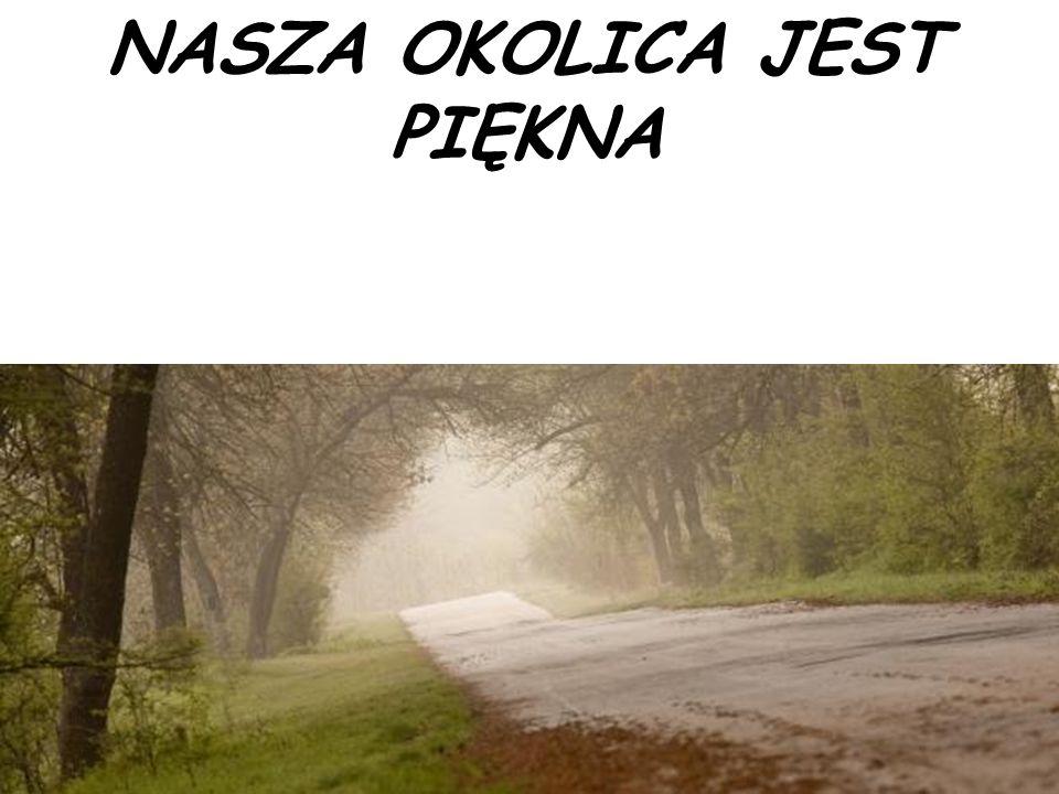 NASZA OKOLICA JEST PIĘKNA