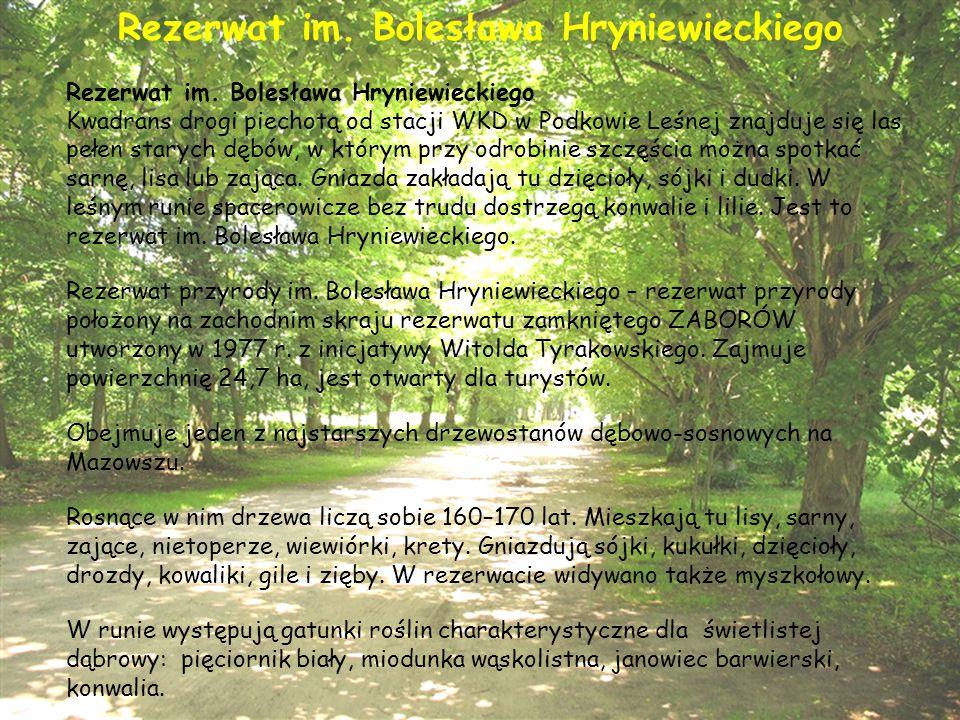 Rezerwat im. Bolesława Hryniewieckiego