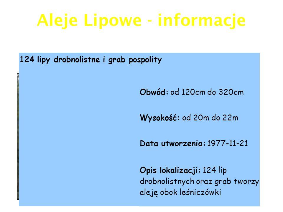 Aleje Lipowe - informacje