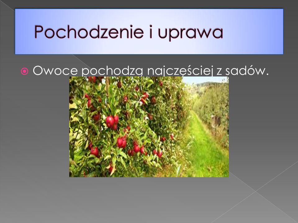 Pochodzenie i uprawa Owoce pochodzą najczęściej z sadów.