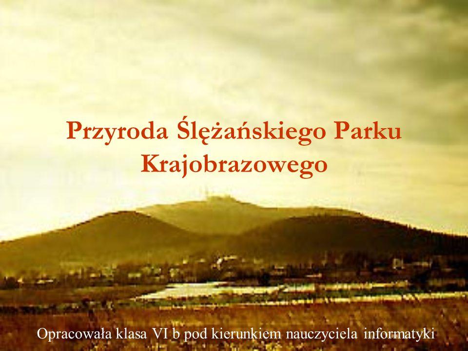Przyroda Ślężańskiego Parku Krajobrazowego