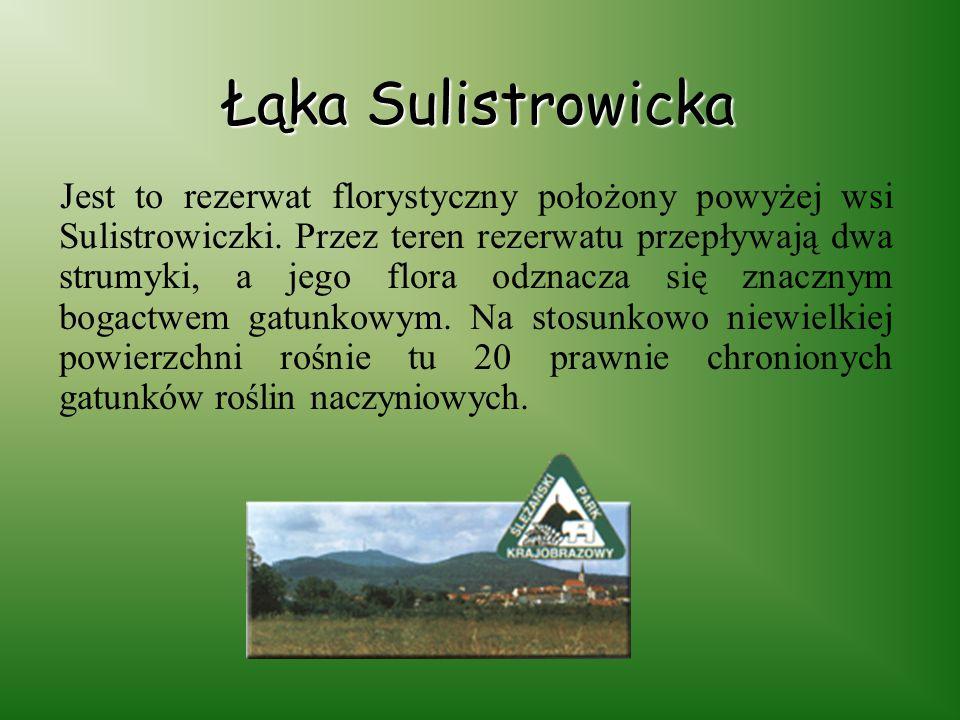 Łąka Sulistrowicka
