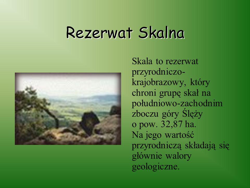 Rezerwat Skalna