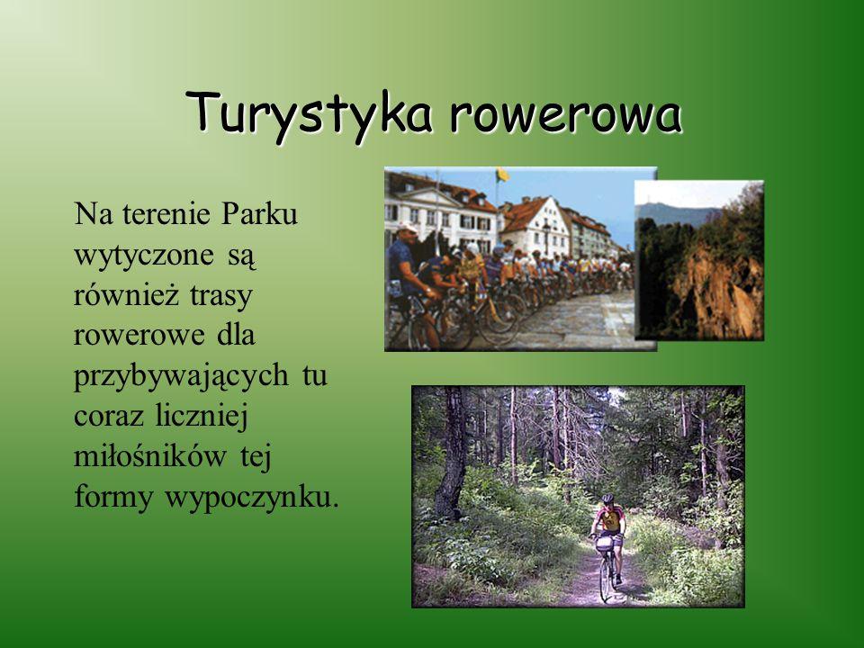 Turystyka rowerowa Na terenie Parku wytyczone są również trasy rowerowe dla przybywających tu coraz liczniej miłośników tej formy wypoczynku.