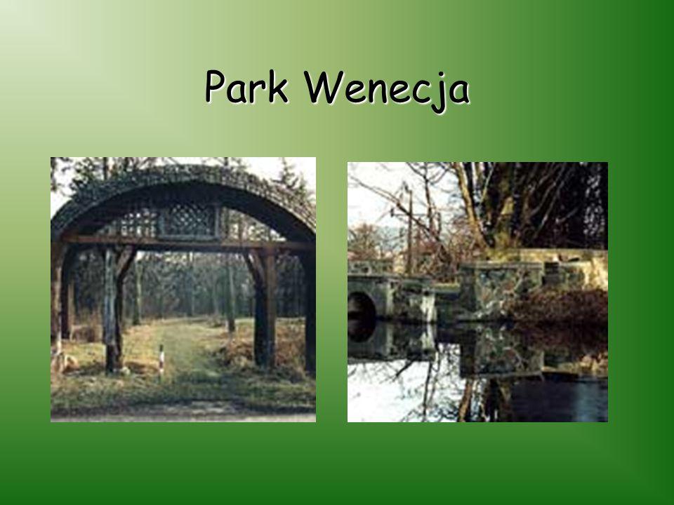Park Wenecja