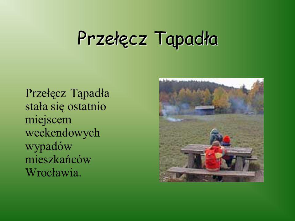 Przełęcz Tąpadła Przełęcz Tąpadła stała się ostatnio miejscem weekendowych wypadów mieszkańców Wrocławia.