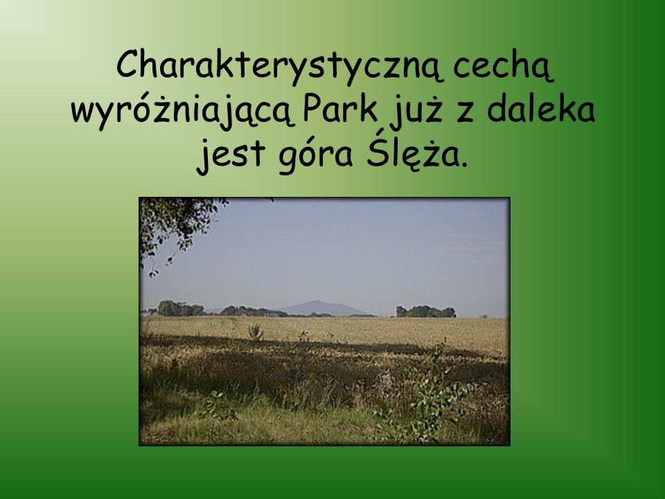 Charakterystyczną cechą wyróżniającą Park już z daleka jest góra Ślęża.