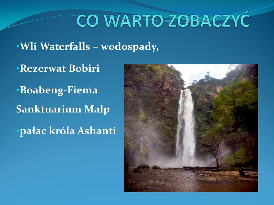 CO WARTO ZOBACZYĆ Wli Waterfalls – wodospady, Rezerwat Bobiri