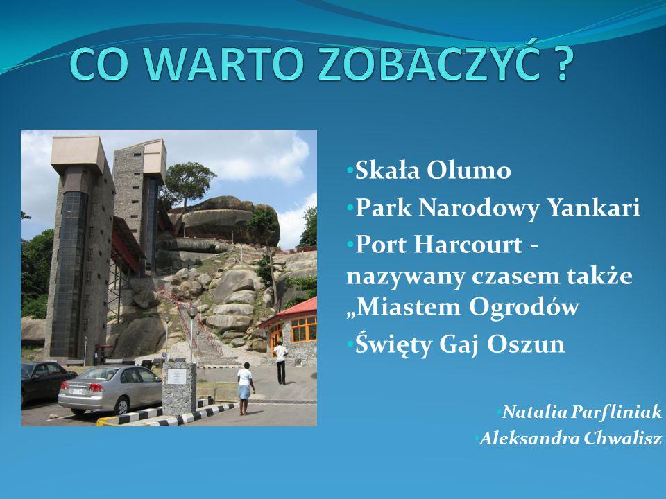CO WARTO ZOBACZYĆ Skała Olumo Park Narodowy Yankari