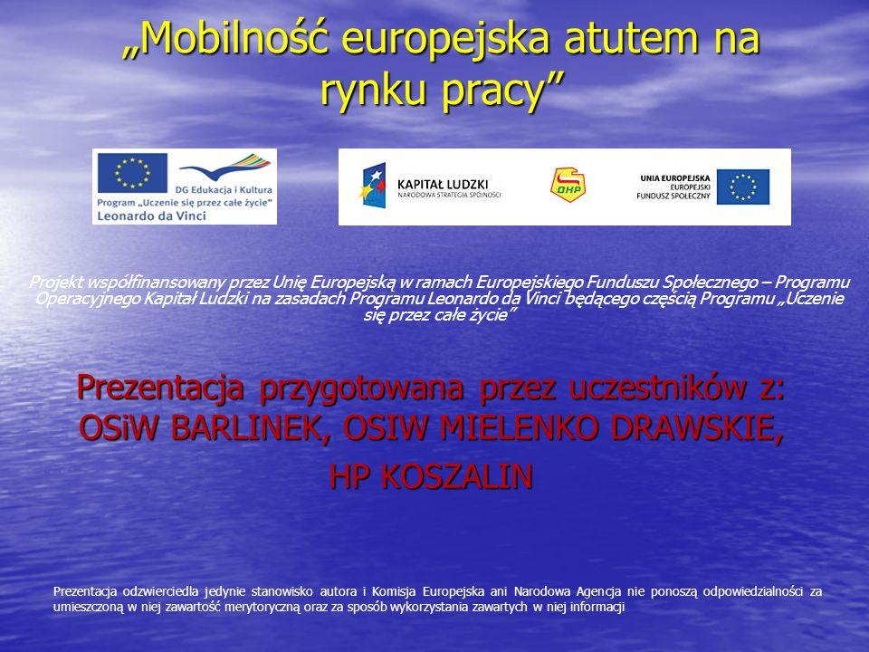 """""""Mobilność europejska atutem na rynku pracy"""