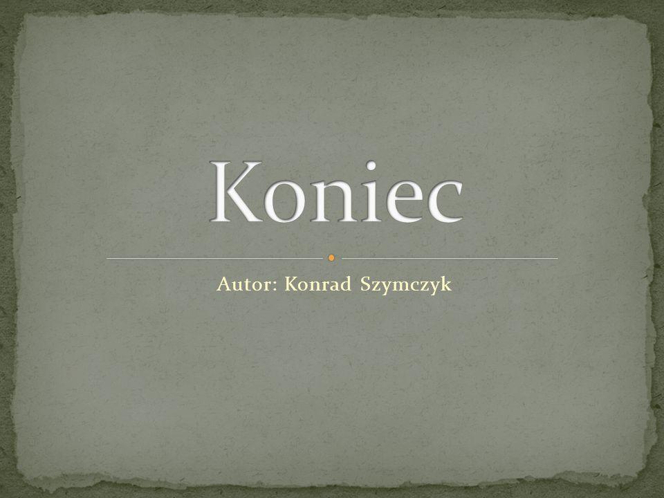 Autor: Konrad Szymczyk