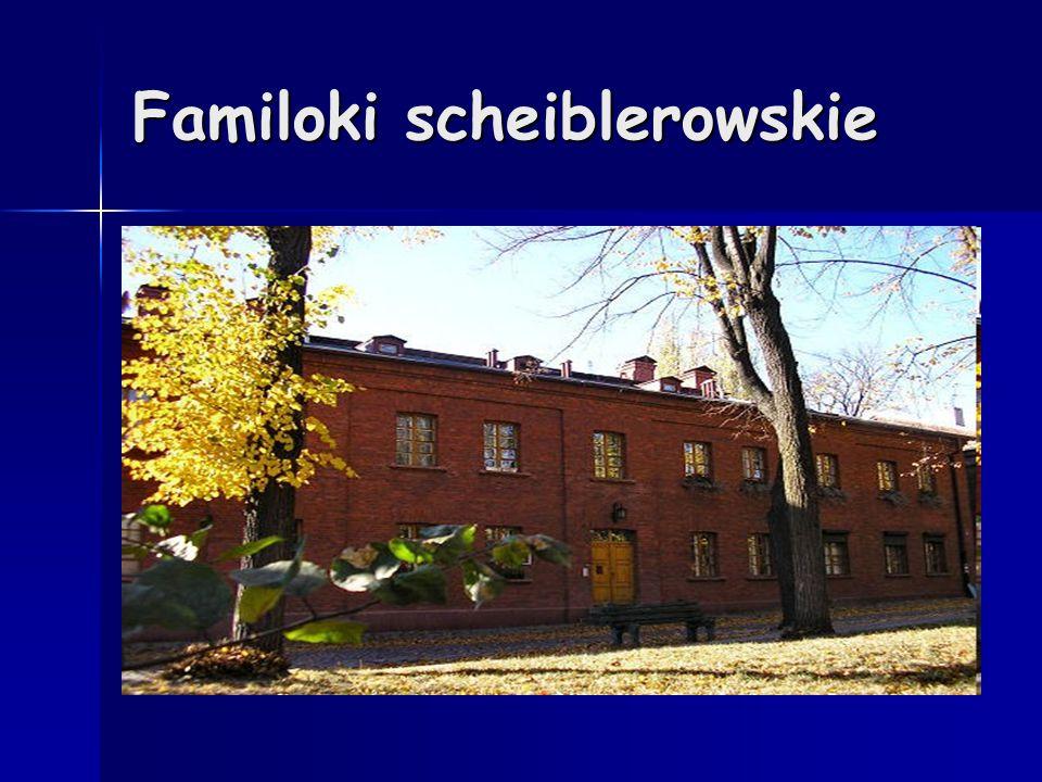 Familoki scheiblerowskie