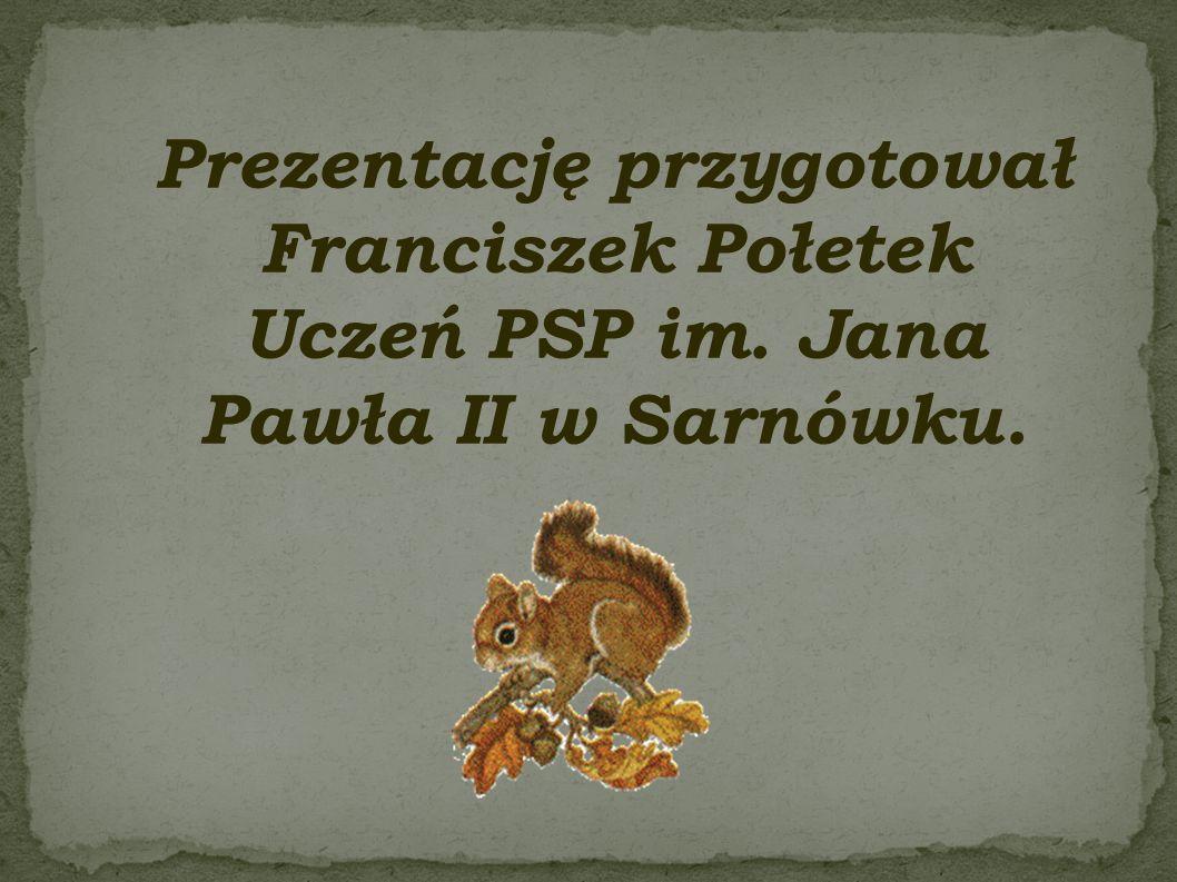 Prezentację przygotował Franciszek Połetek