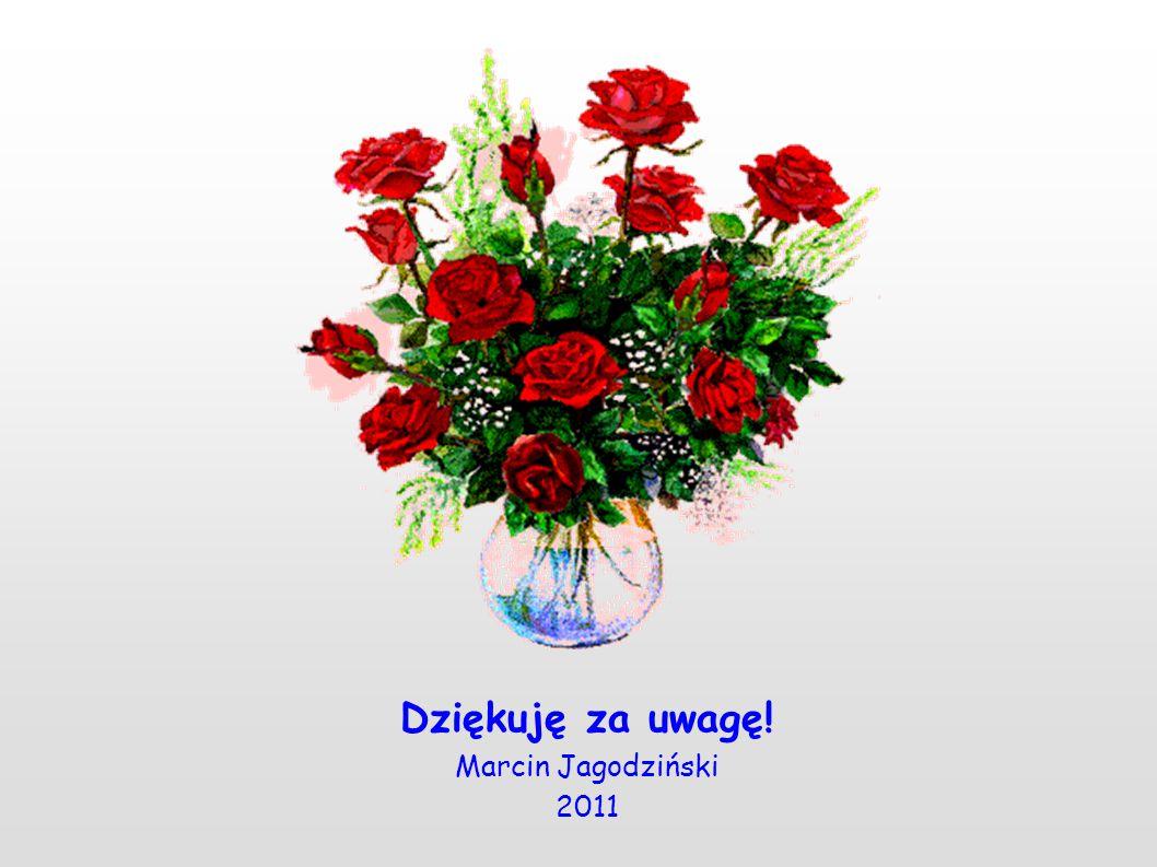 Dziękuję za uwagę! Marcin Jagodziński 2011