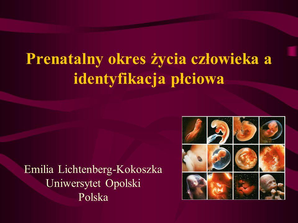 Prenatalny okres życia człowieka a identyfikacja płciowa