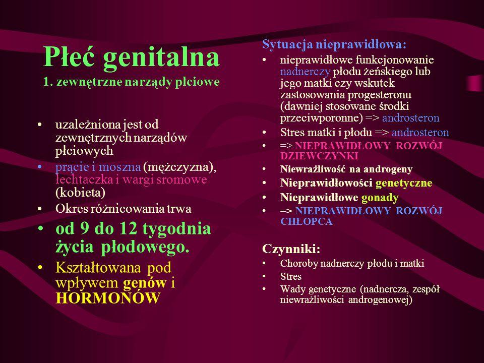 Płeć genitalna 1. zewnętrzne narządy płciowe