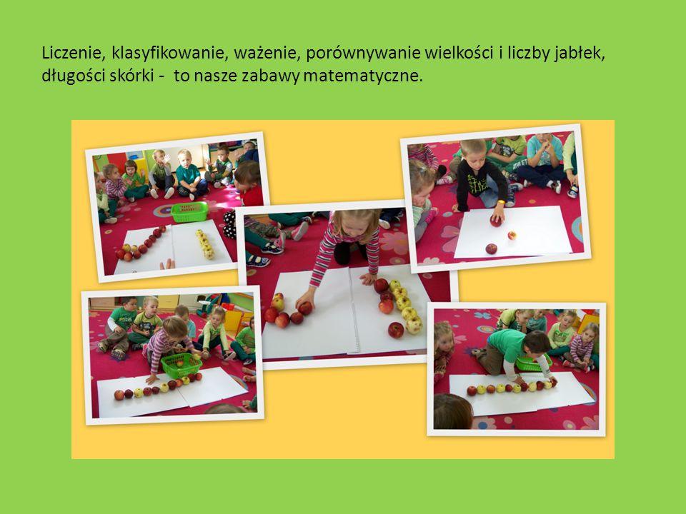 Liczenie, klasyfikowanie, ważenie, porównywanie wielkości i liczby jabłek, długości skórki - to nasze zabawy matematyczne.