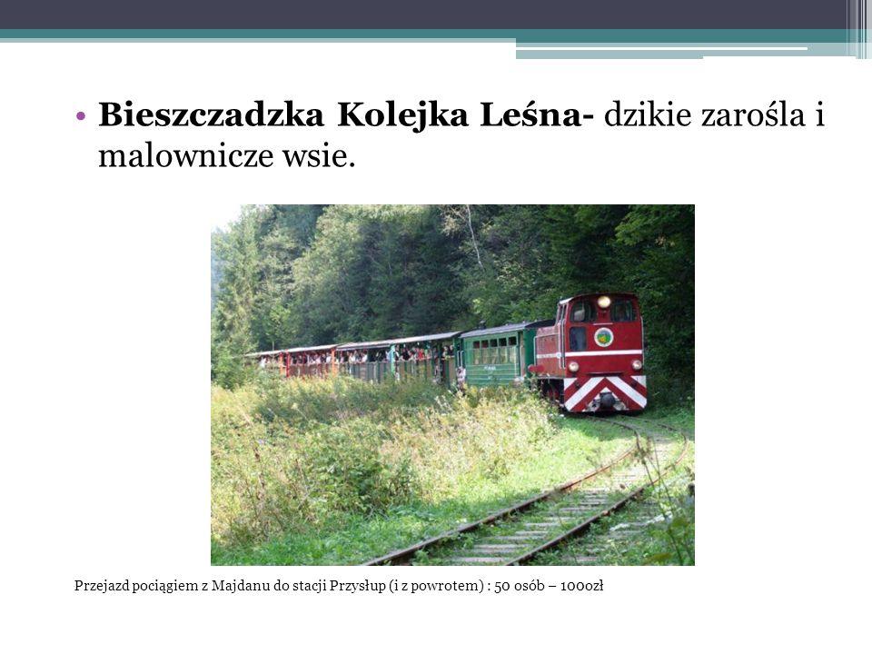 Bieszczadzka Kolejka Leśna- dzikie zarośla i malownicze wsie.
