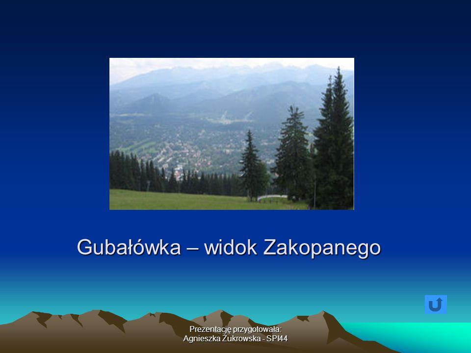 Gubałówka – widok Zakopanego