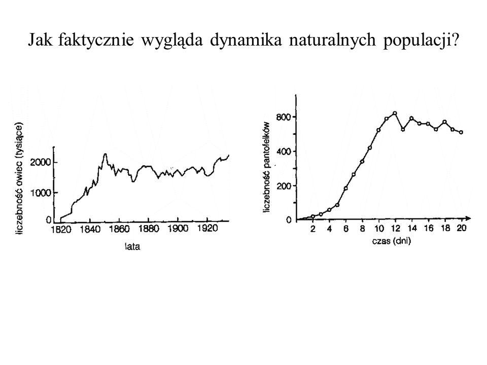Jak faktycznie wygląda dynamika naturalnych populacji
