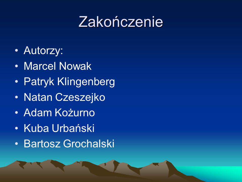 Zakończenie Autorzy: Marcel Nowak Patryk Klingenberg Natan Czeszejko
