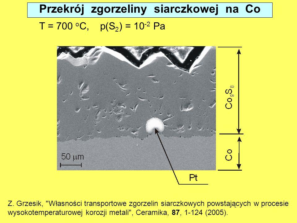 Przekrój zgorzeliny siarczkowej na Co