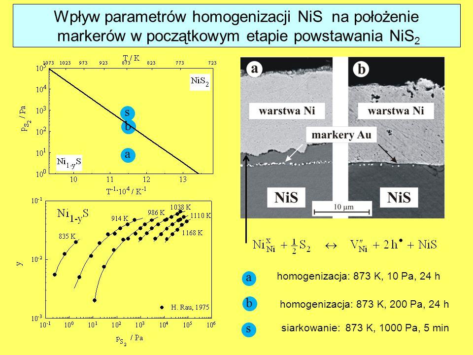 Wpływ parametrów homogenizacji NiS na położenie