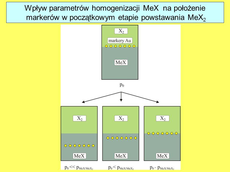 Wpływ parametrów homogenizacji MeX na położenie
