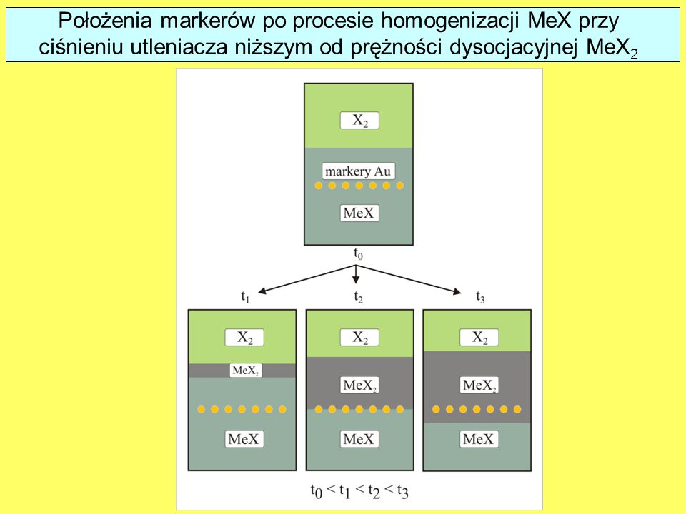 Results of marker experiments in the case of MeX homogenization under oxidant pressure lower than the MeX2 dissociation pressure