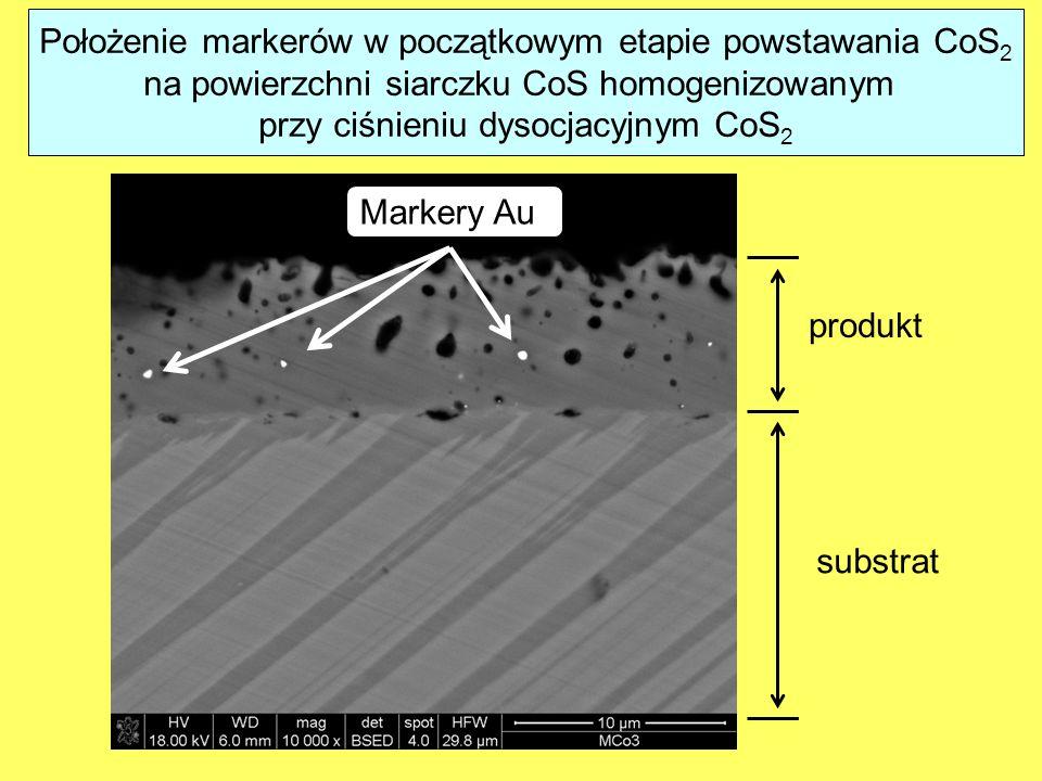 Położenie markerów w początkowym etapie powstawania CoS2