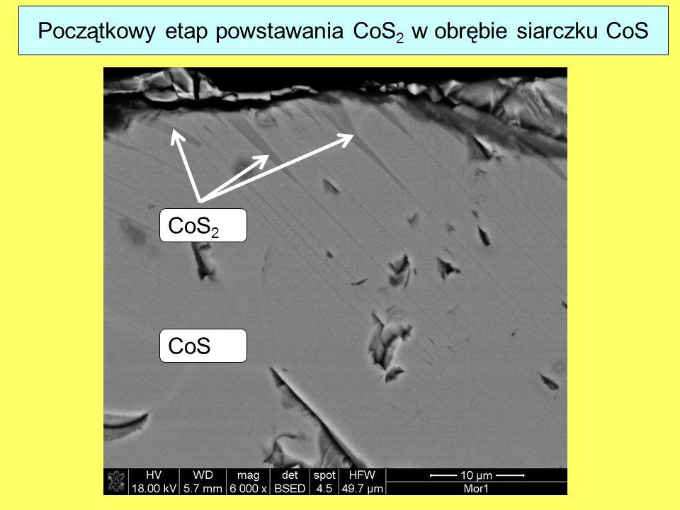 Początkowy etap powstawania CoS2 w obrębie siarczku CoS