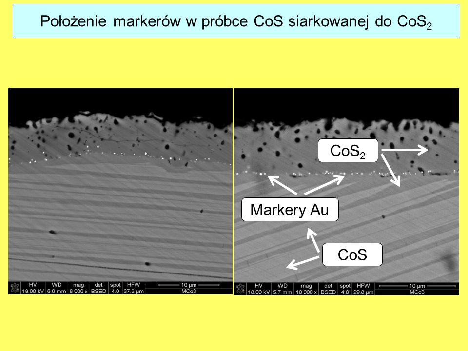 Położenie markerów w próbce CoS siarkowanej do CoS2