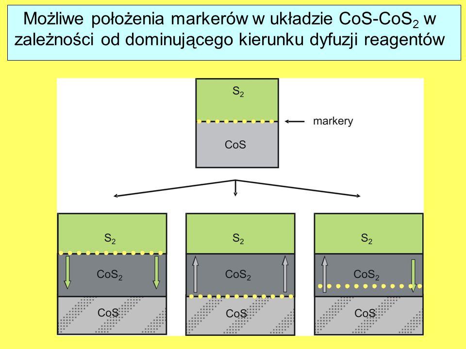 Możliwe położenia markerów w układzie CoS-CoS2 w zależności od dominującego kierunku dyfuzji reagentów