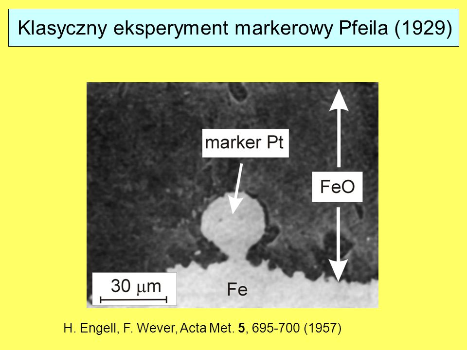 Klasyczny eksperyment markerowy Pfeila (1929)