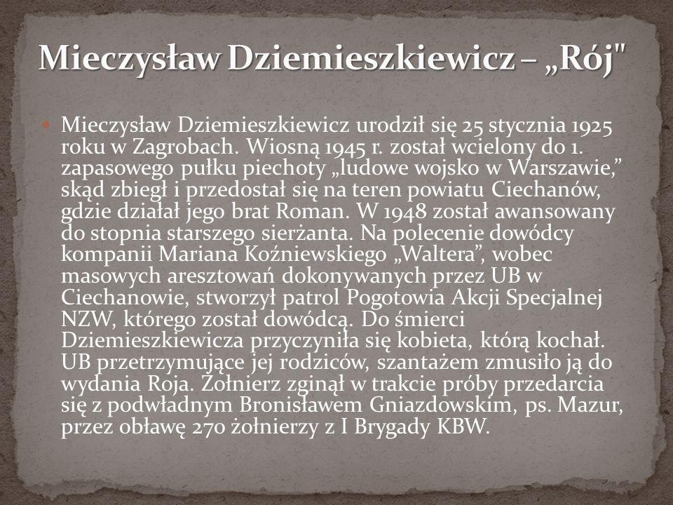 """Mieczysław Dziemieszkiewicz – """"Rój"""