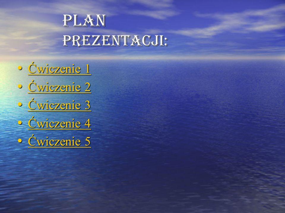 Plan prezentacji: Ćwiczenie 1 Ćwiczenie 2 Ćwiczenie 3 Ćwiczenie 4