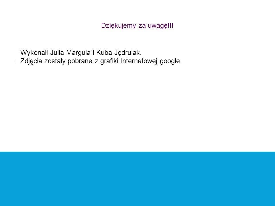 Dziękujemy za uwagę!!. Wykonali Julia Margula i Kuba Jędrulak.