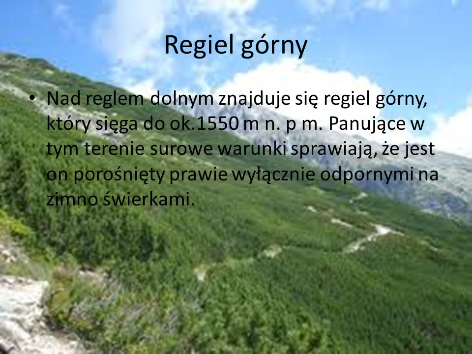 Regiel górny