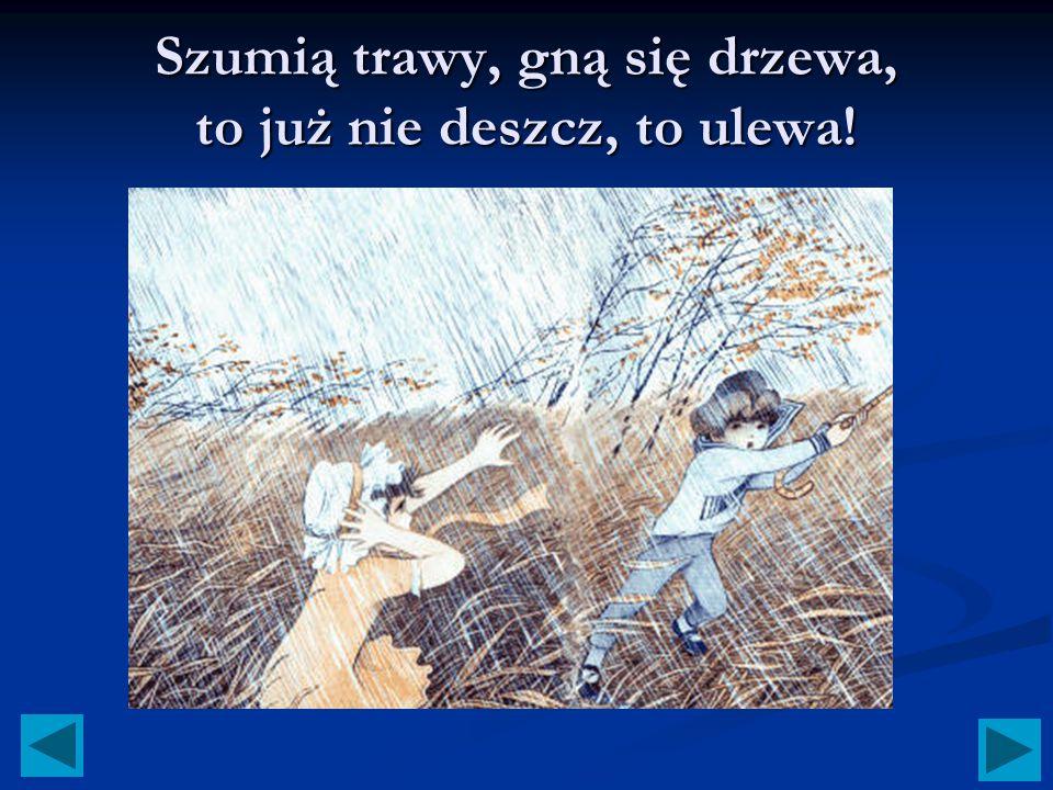 Szumią trawy, gną się drzewa, to już nie deszcz, to ulewa!