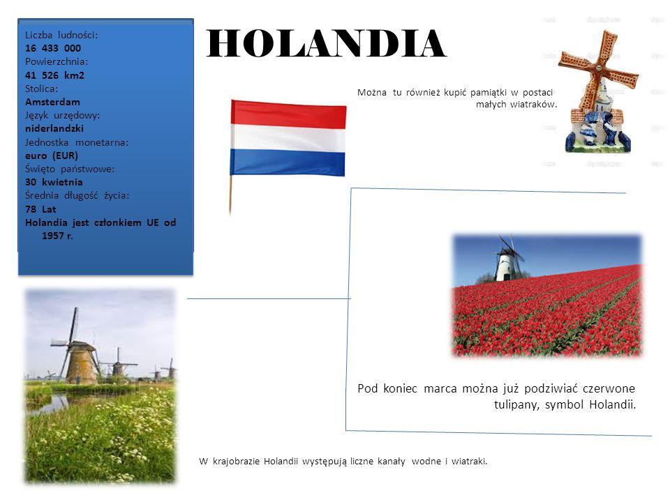 HOLANDIA Pod koniec marca można już podziwiać czerwone