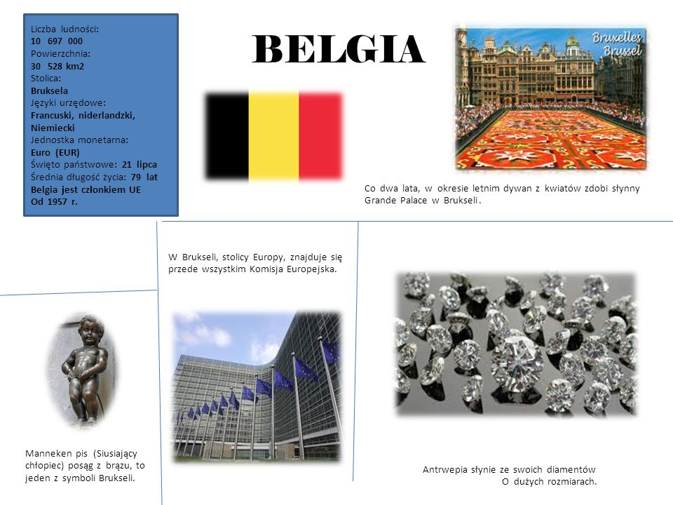 BELGIA Liczba ludności: 697 000 Powierzchnia: 528 km2 Stolica: