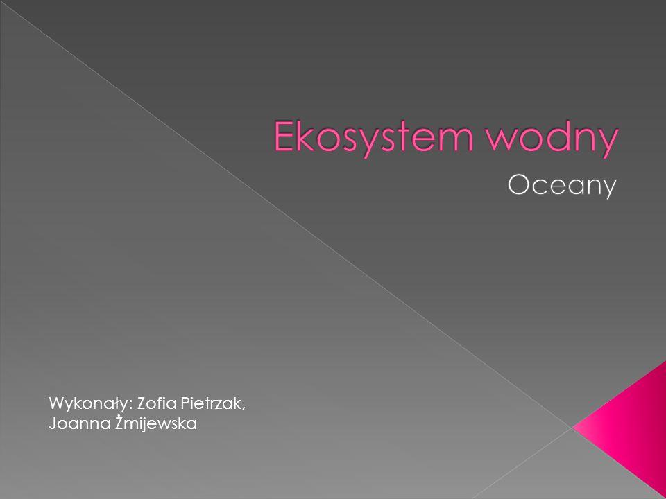 Ekosystem wodny Oceany Wykonały: Zofia Pietrzak, Joanna Żmijewska