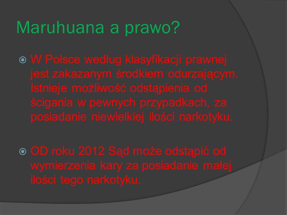 Maruhuana a prawo